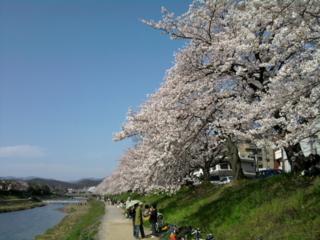 f:id:nurikabe-majin:20100404151501j:image