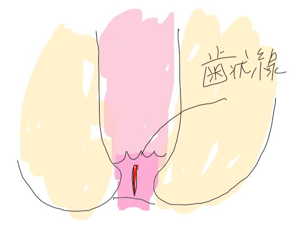 f:id:nurstudy:20200622210812p:plain