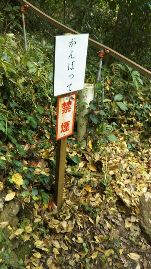 f:id:nuruta:20161212230755j:plain