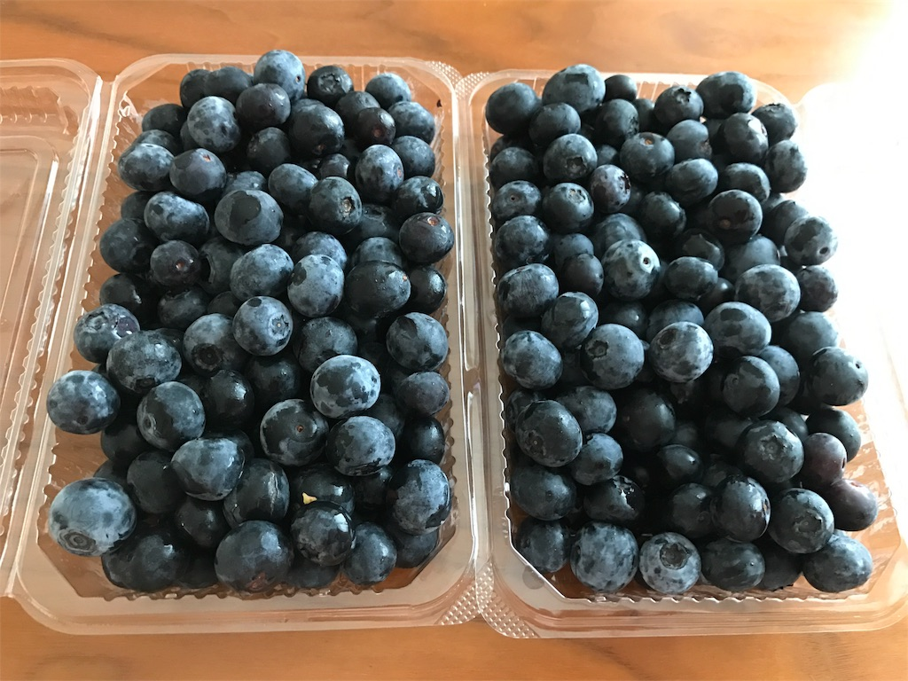 f:id:nutritionaler:20170804091823j:image