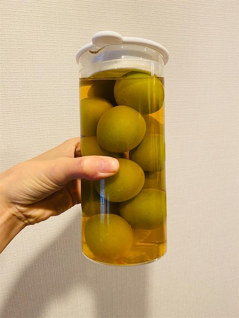 f:id:nutritionaler:20200525001011j:image