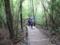 縄文杉までの道筋。これが岩や根っこのごつごつを超えた後の階段で、