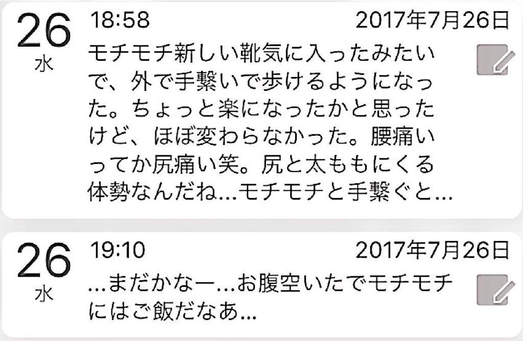f:id:nya_naonoshin:20170727073131j:image