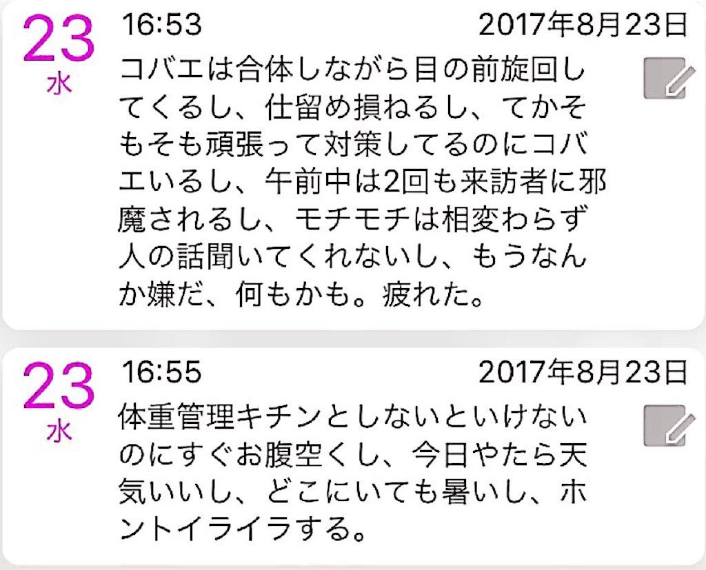 f:id:nya_naonoshin:20170824084306j:image