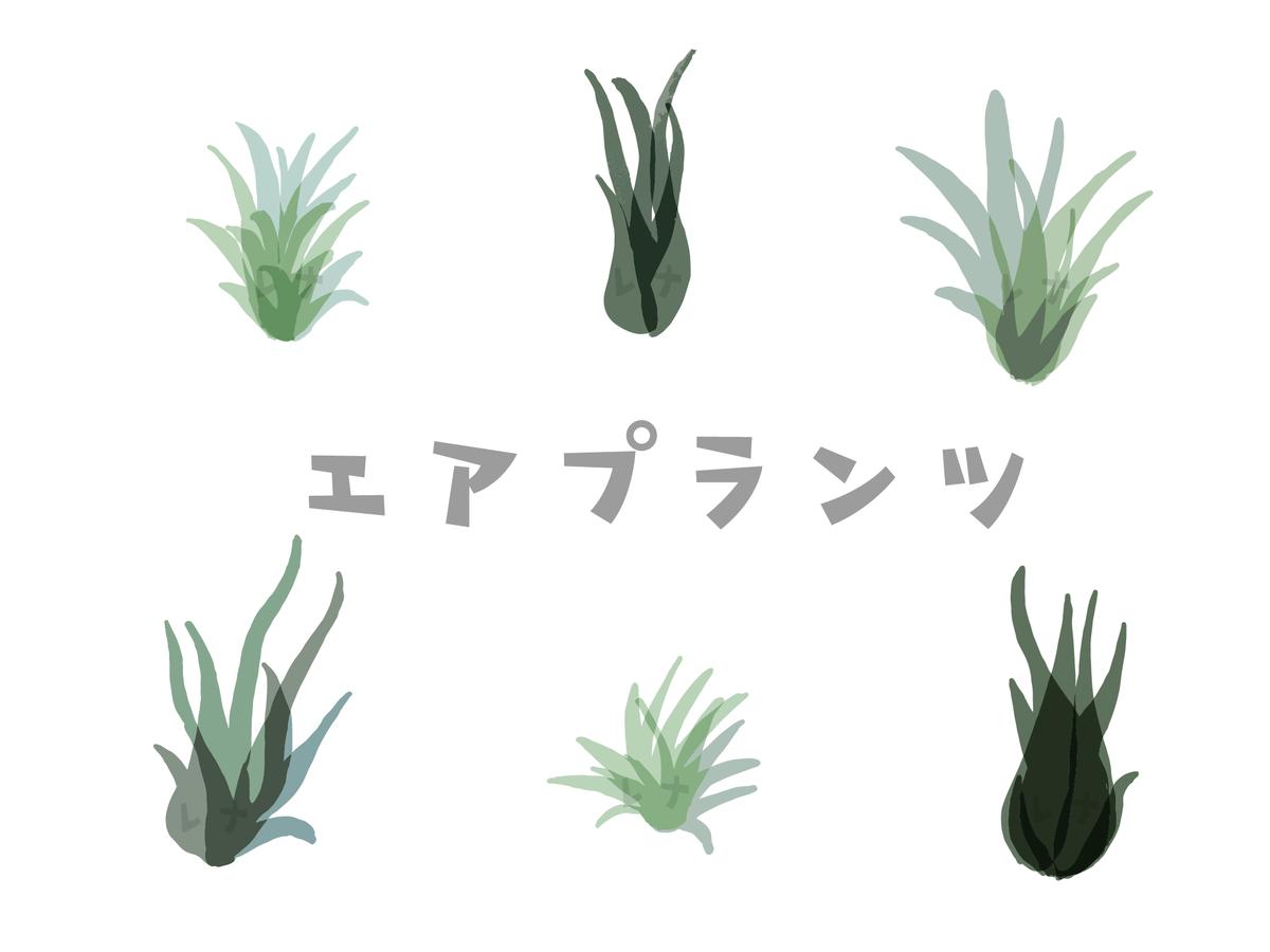 f:id:nyachiko07:20200127160028j:plain