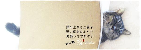 f:id:nyan-chuke:20200618154200j:plain