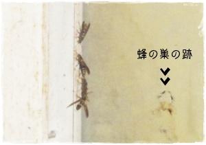 f:id:nyan-chuke:20200720123615j:plain