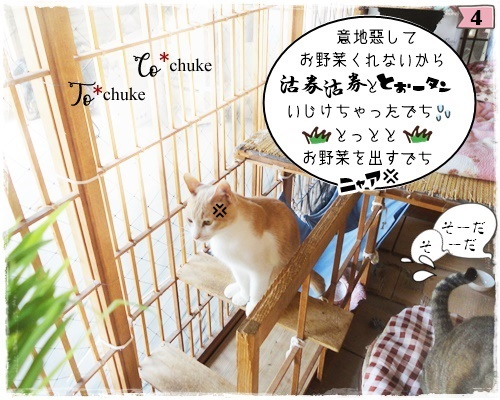 f:id:nyan-chuke:20200806192434j:plain