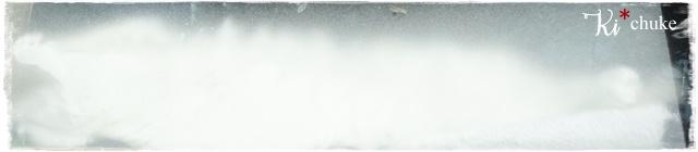 f:id:nyan-chuke:20201123121318j:plain
