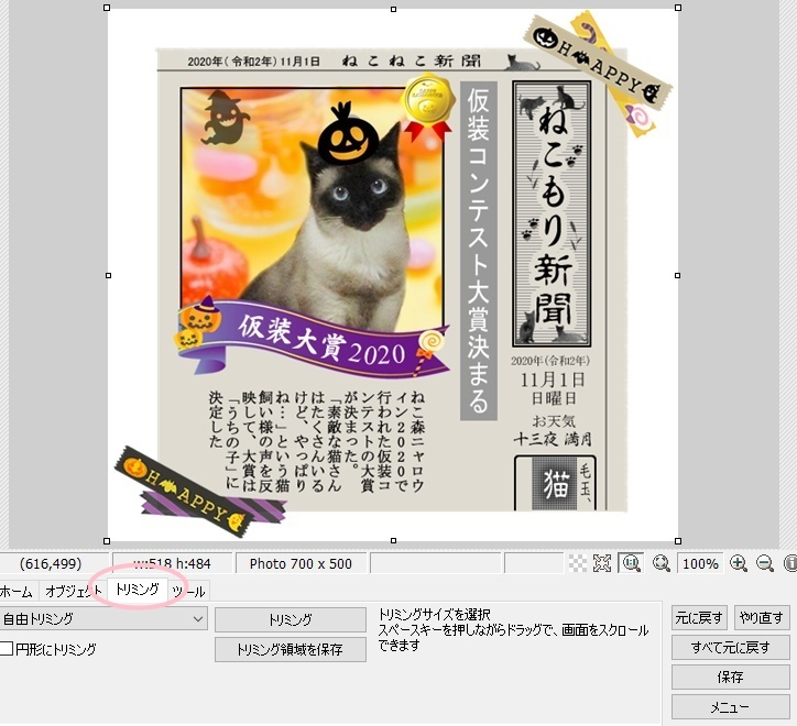 f:id:nyan-chuke:20201210161410j:plain
