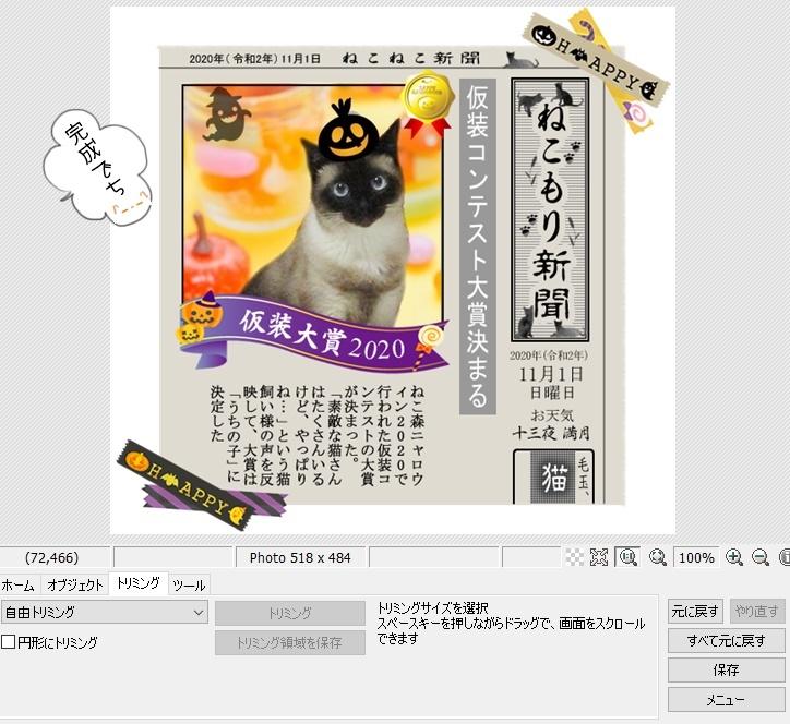 f:id:nyan-chuke:20201210161418j:plain