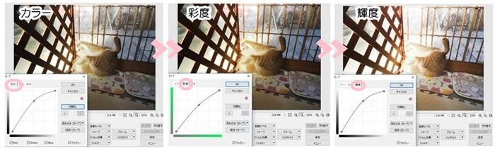 f:id:nyan-chuke:20201211145827j:plain