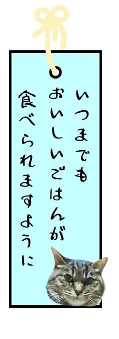 f:id:nyan-chuke:20210706124956j:plain
