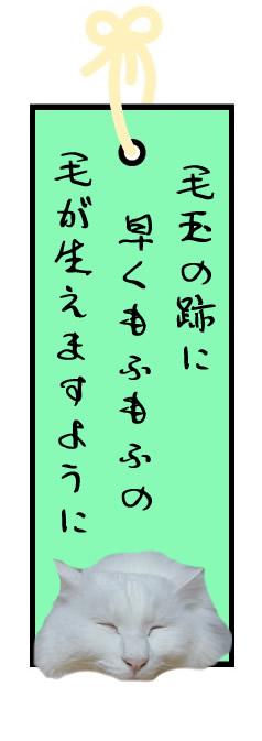 f:id:nyan-chuke:20210706125036j:plain