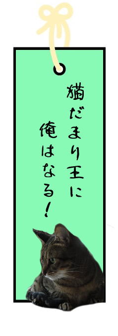 f:id:nyan-chuke:20210706125113j:plain