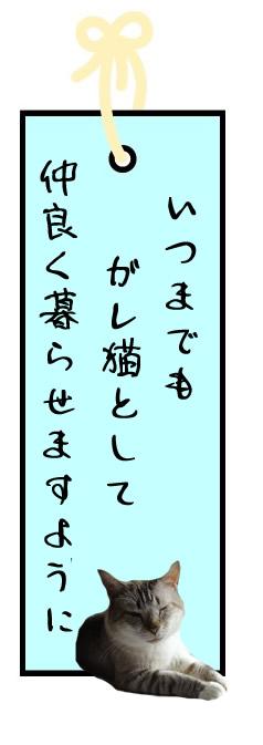 f:id:nyan-chuke:20210706125124j:plain