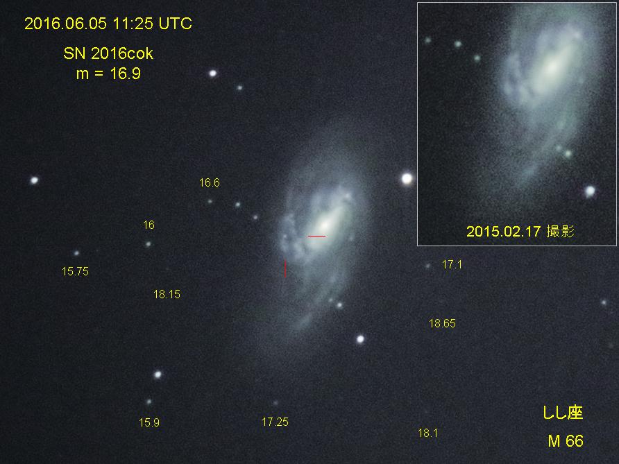メシエ天体に輝く超新星 SN 2016cok in M66 - nyancotan's diary 天体 ...