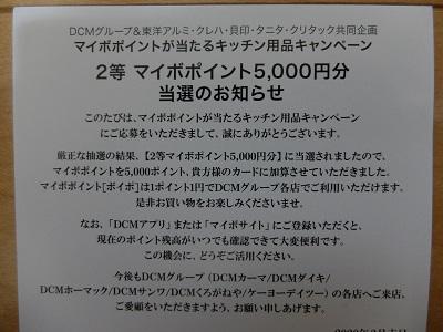 f:id:nyanhaha:20200321191500j:plain