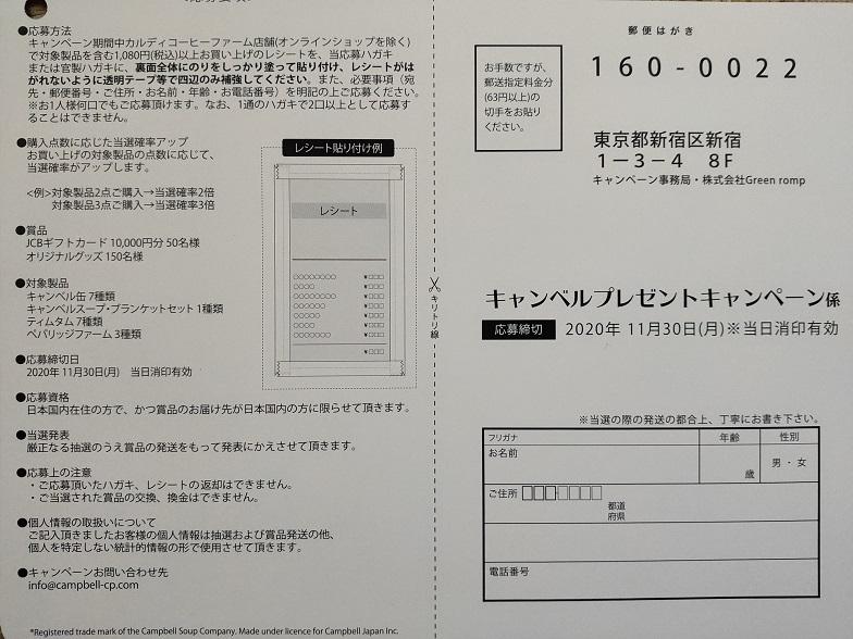 f:id:nyanhaha:20201122203721j:plain