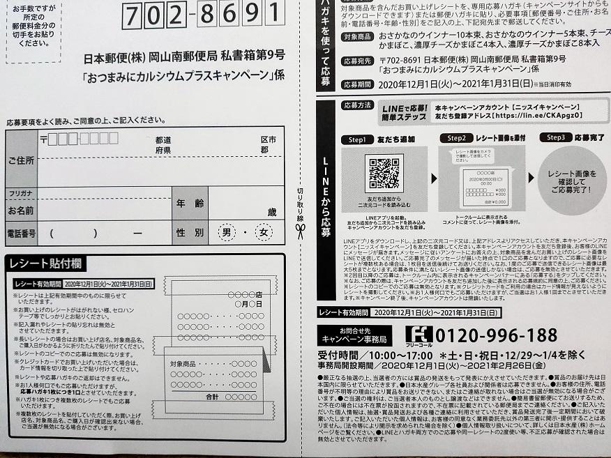 f:id:nyanhaha:20210109185810j:plain