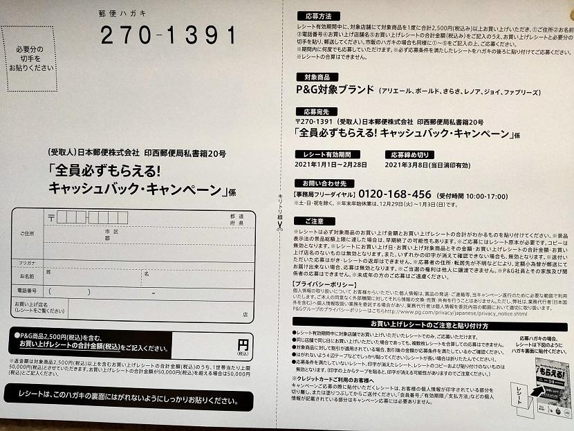 f:id:nyanhaha:20210119190101j:plain