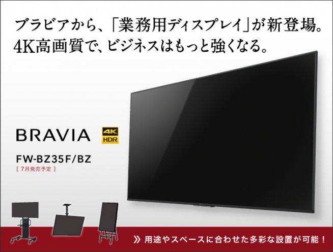 f:id:nyankonohousoku:20180329024953j:plain