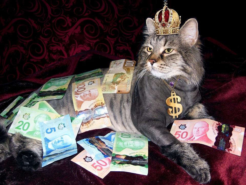 潜在意識と金運の関係 脳覚醒と潜在意識覚醒こそが金運を引き寄せる最善の策