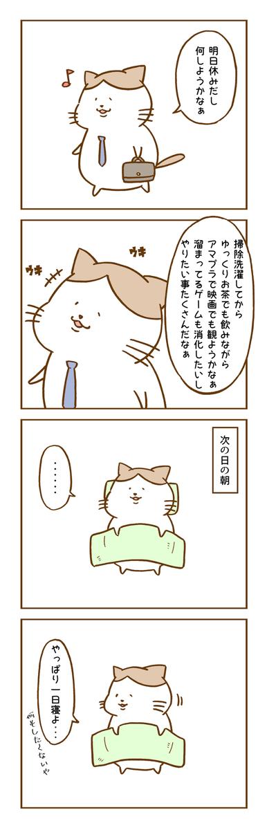 休日の過ごし方と猫
