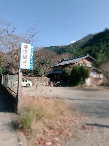 f:id:nyansu-nyan:20171216230702j:image