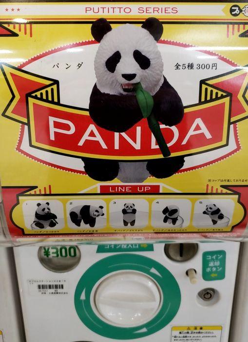 パンダのガチャガチャ