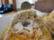 AKラボのモンブラン