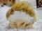 ラ・プレシューズの和栗のモンブラン