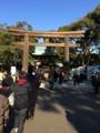 2015年初詣(明治神宮)