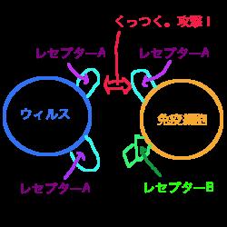 f:id:nyaonyaokun:20200120224249p:plain