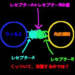 f:id:nyaonyaokun:20200120230635p:plain