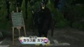[ネタ][テレビ]090726