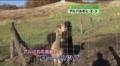 [テレビ]091031_124127