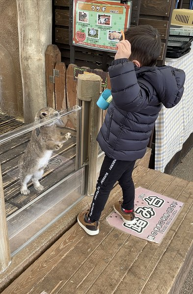 秋吉台自然動物公園 サファリランドに行ってきました🐘🌈