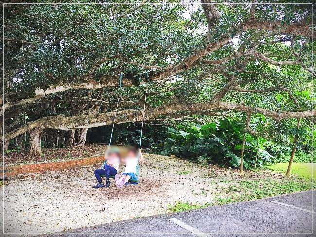 入口にある木のブランコ