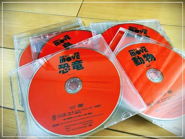 DVDケースにて保管