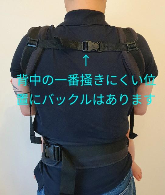 f:id:nzYamagata:20200730064936j:image