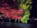徳田神社 ライトアップ
