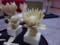 高野豆腐彫刻