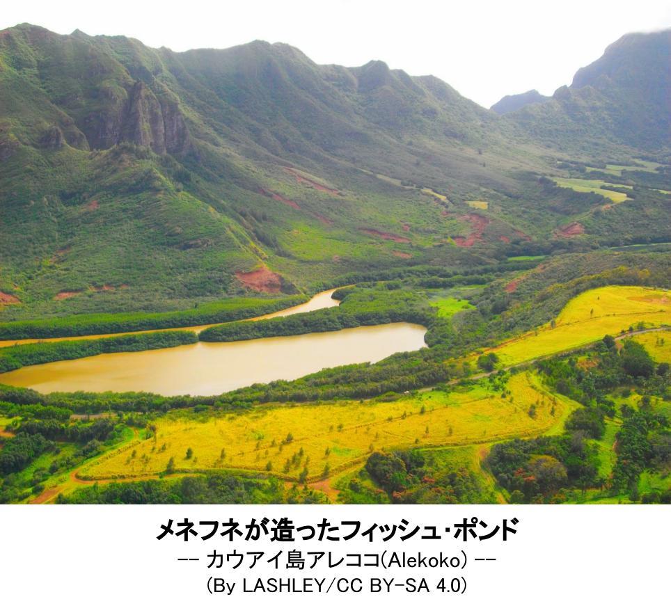f:id:o_hanashi:20210122120444j:plain