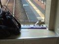 [鉄道][キハ150系]函館本線1930D(キハ150-12)小樽駅到着/2008.07.28