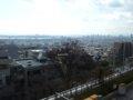 [風景]神戸大学アカデミア館レストラン「さくら」前から神戸市内100213
