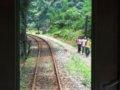 [鉄道][風景][台鐵DR1000]★344:區間車3214次(菁桐-瑞芳)車窓/もうすぐ宜蘭線分岐点