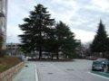 [風景]神戸大学文学部校舎前ロータリー100227