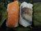 ★061:柿の葉すし/近鉄名古屋線急行車内20101009