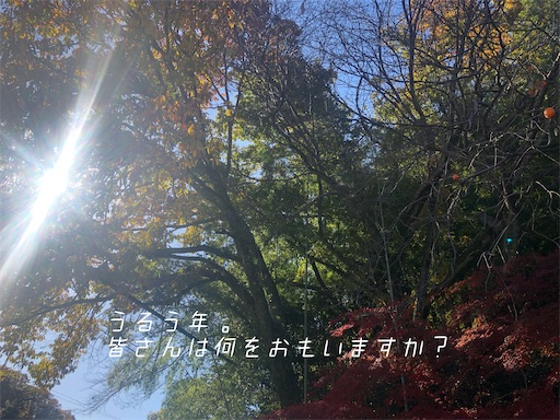 f:id:oak_4T:20200228231930j:image